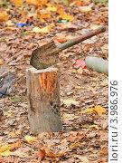 Купить «Лопата воткнута в чурбак», эксклюзивное фото № 3986976, снято 21 октября 2012 г. (c) Алёшина Оксана / Фотобанк Лори