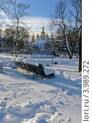 Зима на Владимирской горке (2009 год). Стоковое фото, фотограф Владимир Фалин / Фотобанк Лори