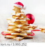 Купить «Печенье - Рождественская елка», фото № 3993252, снято 8 сентября 2012 г. (c) Tatjana Baibakova / Фотобанк Лори