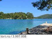 Озеро в национальном парке Млет, Хорватия. Стоковое фото, фотограф Александр Тесевич / Фотобанк Лори