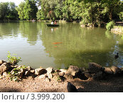 Римский парк жарким летом (2012 год). Стоковое фото, фотограф Светлана Артамонова / Фотобанк Лори