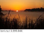 Утро. Стоковое фото, фотограф Сергей Пупков / Фотобанк Лори