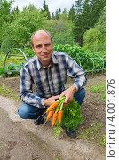 Купить «Мужчина с урожаем моркови на дачном участке», эксклюзивное фото № 4001876, снято 23 августа 2012 г. (c) Елена Коромыслова / Фотобанк Лори