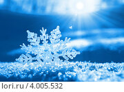 Купить «Снежинка в лучах солнца», фото № 4005532, снято 7 ноября 2012 г. (c) Икан Леонид / Фотобанк Лори