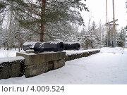 Купить «Форт Красная Горка», фото № 4009524, снято 15 февраля 2009 г. (c) Александр Чернышёв / Фотобанк Лори