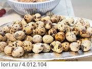 Купить «Перепелиные яйца», фото № 4012104, снято 24 октября 2012 г. (c) Екатерина Афанасьева / Фотобанк Лори