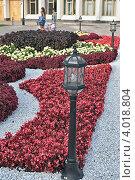 Городской ландшафтный дизайн. Стоковое фото, фотограф Николай Михайловский / Фотобанк Лори