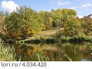 Осенний пейзаж. Стоковое фото, фотограф Тарасенко Татьяна / Фотобанк Лори