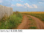 Дорога. Летний пейзаж. Стоковое фото, фотограф Попова Ольга / Фотобанк Лори