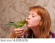 Купить «Девочка подросток целует волнистого попугая», эксклюзивное фото № 4039676, снято 5 октября 2012 г. (c) Игорь Низов / Фотобанк Лори