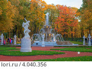 Купить «Санкт-Петербург. Летний сад», эксклюзивное фото № 4040356, снято 29 сентября 2012 г. (c) Литвяк Игорь / Фотобанк Лори