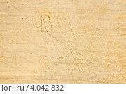 Купить «Декстурая деревянной доски», фото № 4042832, снято 31 октября 2012 г. (c) Олег Селезнев / Фотобанк Лори
