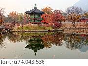 Купить «Восточная беседка отражается в пруду осенью. Сеул, императорский дворец», фото № 4043536, снято 8 ноября 2012 г. (c) Ольга Липунова / Фотобанк Лори