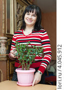 Купить «Молодая женщина с комнатным растением», фото № 4045912, снято 14 ноября 2012 г. (c) Яков Филимонов / Фотобанк Лори