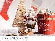 Купить «Новогодние украшения», фото № 4049072, снято 25 октября 2012 г. (c) Сергей Петерман / Фотобанк Лори
