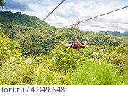 Купить «Женщина летит над джунглями на канате», фото № 4049648, снято 11 мая 2012 г. (c) Сергей Дубров / Фотобанк Лори