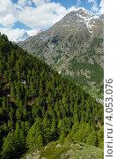 Купить «Лето в Швейцарских Альпах», фото № 4053076, снято 7 июня 2012 г. (c) Юрий Брыкайло / Фотобанк Лори
