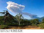 Купить «Извержение вулкана Иван Грозный», фото № 4060628, снято 25 августа 2012 г. (c) Владимир Серебрянский / Фотобанк Лори