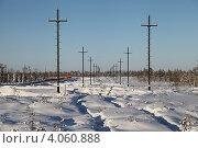 Купить «Энергетический пейзаж. Зима. Строительство высоковольтной воздушной линии электропередачи на месторождение в Западной Сибири», эксклюзивное фото № 4060888, снято 4 ноября 2012 г. (c) Валерий Акулич / Фотобанк Лори