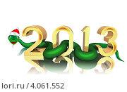 Купить «2013 - год змеи», иллюстрация № 4061552 (c) Федин Константин / Фотобанк Лори