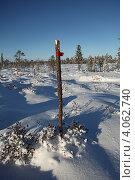 Купить «Вешка на заснеженном болоте», эксклюзивное фото № 4062740, снято 8 ноября 2012 г. (c) Валерий Акулич / Фотобанк Лори