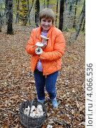 Женщина в лесу с корзиной грибов. Стоковое фото, фотограф Анна Мартынова / Фотобанк Лори