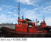 Купить «Тайфун и его брат-близнец Зубр (Калининградский порт)», эксклюзивное фото № 4066588, снято 25 июня 2008 г. (c) Ната Антонова / Фотобанк Лори