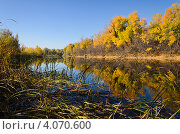 Купить «Осень», фото № 4070600, снято 21 октября 2012 г. (c) Александр Груднина / Фотобанк Лори