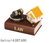 Купить «Судейский молоток и домик», иллюстрация № 4087600 (c) Лукиянова Наталья / Фотобанк Лори