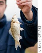 Купить «Мужская рука рыбака держит за леску пойманного карася», эксклюзивное фото № 4091192, снято 5 ноября 2012 г. (c) Игорь Низов / Фотобанк Лори