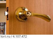 Купить «Дверная ручка», фото № 4107472, снято 27 декабря 2011 г. (c) Владимир Хаманов / Фотобанк Лори