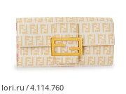Купить «Элегантный бежевый женский клтач с золотистой пряжкой на белом фоне», фото № 4114760, снято 19 декабря 2018 г. (c) Elnur / Фотобанк Лори