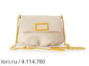Купить «Белая женская сумочка на золотистой цепочке с пряжкой на белом фоне», фото № 4114780, снято 19 декабря 2018 г. (c) Elnur / Фотобанк Лори