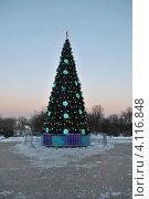 Купить «Новогодняя елка в Коломенском парке, Москва», эксклюзивное фото № 4116848, снято 12 декабря 2012 г. (c) lana1501 / Фотобанк Лори