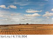 Поля в Испании (2012 год). Стоковое фото, фотограф юлия заблоцкая / Фотобанк Лори