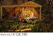 Купить «Красивая Рождественская вертепная композиция на вечерней улице Фуншала», фото № 4128748, снято 22 декабря 2011 г. (c) Виктория Катьянова / Фотобанк Лори