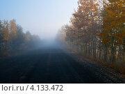 Купить «Осенняя дорога в тумане», фото № 4133472, снято 16 сентября 2009 г. (c) Александр Лицис / Фотобанк Лори