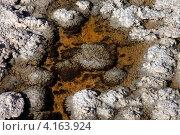 Почва в Долине смерти (2011 год). Стоковое фото, фотограф Морозова Татьяна / Фотобанк Лори