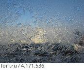 Зима рисует на стекле. Стоковое фото, фотограф Роза Ибрагимова / Фотобанк Лори