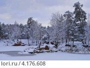 В старом парке. Зима. Стоковое фото, фотограф Виктор Карпов / Фотобанк Лори