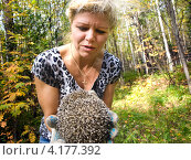 Купить «Белокурая красивая женщина держит в руках лесного ежа», фото № 4177392, снято 8 сентября 2012 г. (c) Евгений Ткачёв / Фотобанк Лори