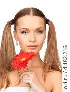 Купить «Очаровательная молодая женщина с двумя хвостами и красным цветком на белом фоне», фото № 4182216, снято 6 июня 2010 г. (c) Syda Productions / Фотобанк Лори