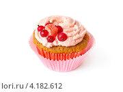 Ванильный кекс со взбитыми сливками. Стоковое фото, фотограф Анна Гучек / Фотобанк Лори