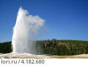 Гейзер в Йеллоустонском национальном парке, Америка. Стоковое фото, фотограф Lucy Cherniak / Фотобанк Лори