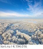 Купить «Вид сверху на лес зимой», фото № 4194016, снято 8 января 2013 г. (c) Владимир Мельников / Фотобанк Лори