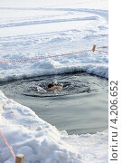 Купить «Человек погрузился в прорубь зимой», фото № 4206652, снято 19 января 2013 г. (c) Татьяна Белова / Фотобанк Лори