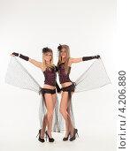 Купить «Две сексуальные девушки в эротических нарядах», фото № 4206880, снято 12 января 2013 г. (c) Литвяк Игорь / Фотобанк Лори