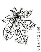 Купить «Графический рисунок листа каштана», иллюстрация № 4216064 (c) Astronira / Фотобанк Лори