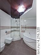 Купить «Интерьер современной ванной комнаты», фото № 4216320, снято 19 октября 2012 г. (c) Лямзин Дмитрий / Фотобанк Лори