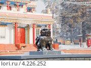 Купить «Лев. Скульптура. Читинский дацан «Дамба Брайбунлинг»», эксклюзивное фото № 4226252, снято 12 января 2013 г. (c) Александр Щепин / Фотобанк Лори